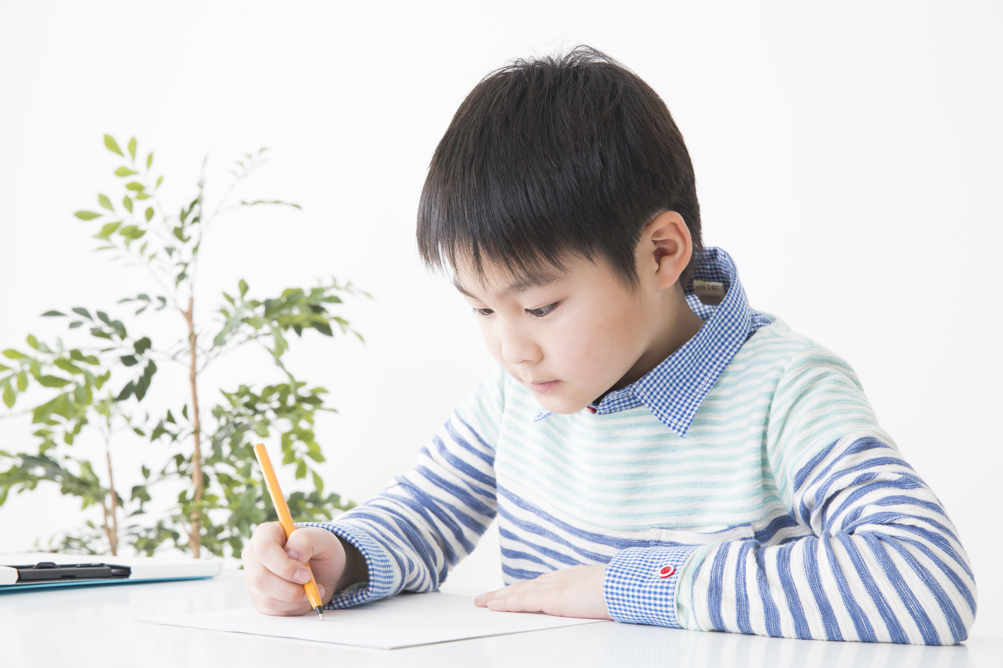 紙にペンで何か書いている男の子